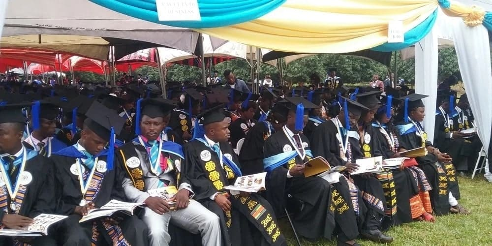 bsc information technology post graduate diploma in education human resource management