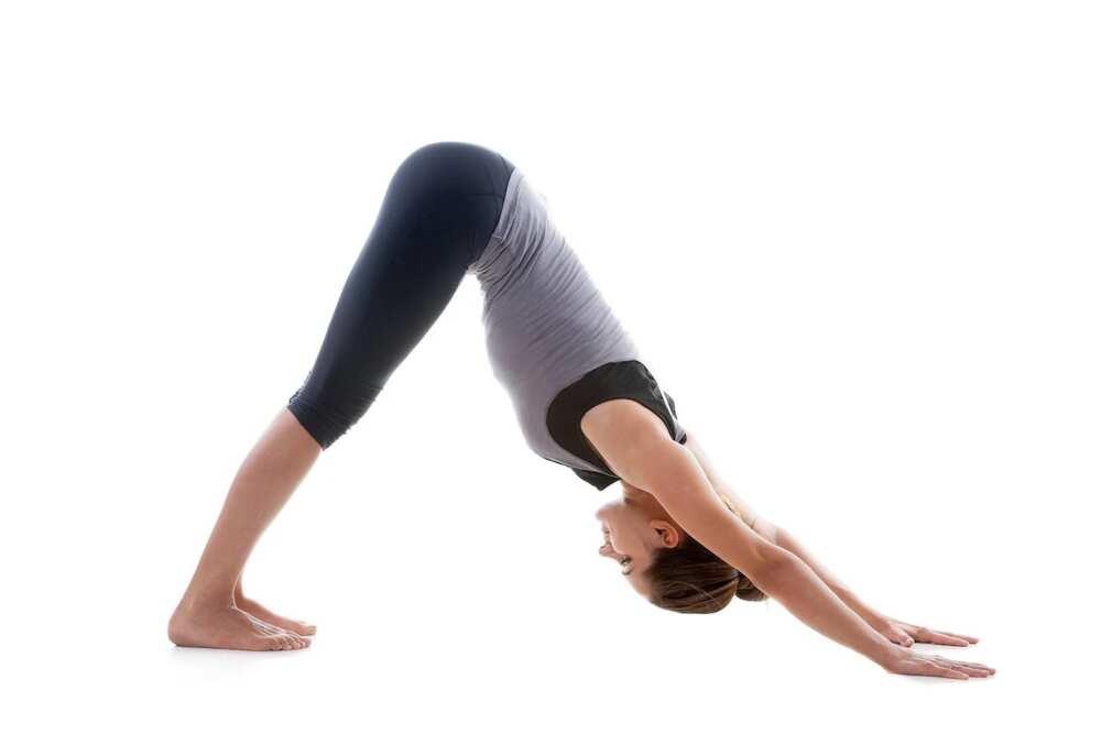 yoga exercises for flat stomach yoga exercises for beginners yoga exercises for hips