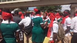 Unemployed Ghanaian nurses plan to angrily raid Ministry of Health premises