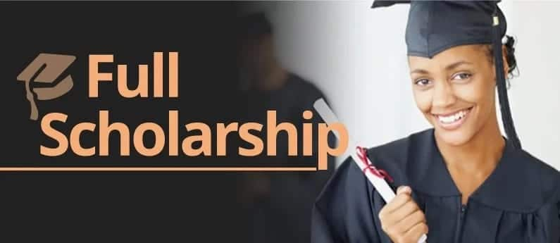 Chinese government scholarship form download