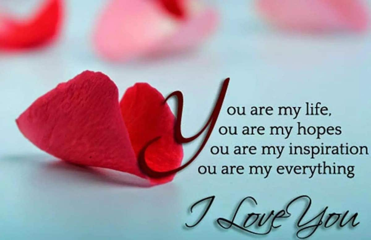 Lovely flowers with love messages Nice flowers Love flowers images