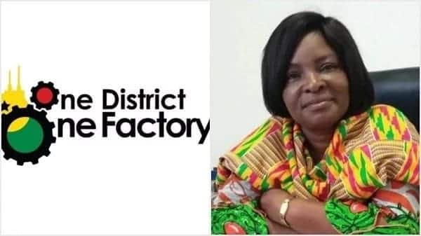 NDC MPs 'chasing' me with One District One Factory proposals – Coordinator reveals