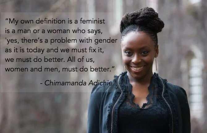 Chimamanda Ngozi Adichie's Interview