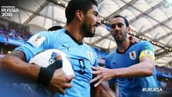 Luis Alberto Suarez sends Uruguay into the second round with a 1-0 defeat of Saudi Arabia