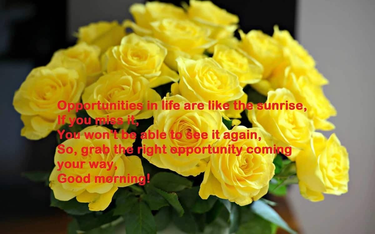 friendship day good morning messages, short good morning friendship messages, good morning messages for friends with pictures