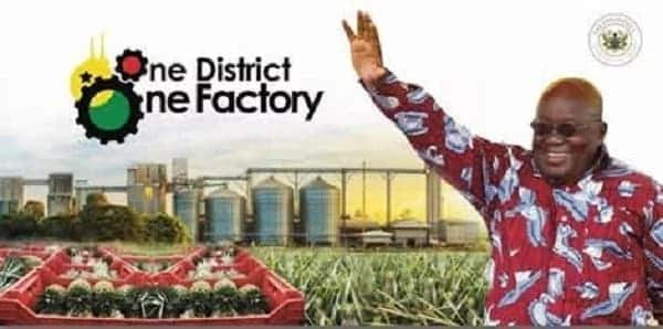 NDC MPs 'chasing' me with One District One Factory proposals – Coordinator blows alarm