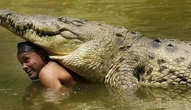 15 Paga Crocodile Pond Pictures that Will Leave you Amazed