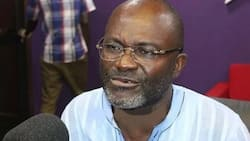 Kennedy Agyapong questions Agric Minister's figures - says 745,000 jobs comment is a lie