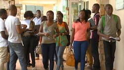 A list of top Ashesi University courses offered in 2020/2021