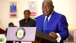 Akufo-Addo vows to create business friendly environment for entrepreneurs