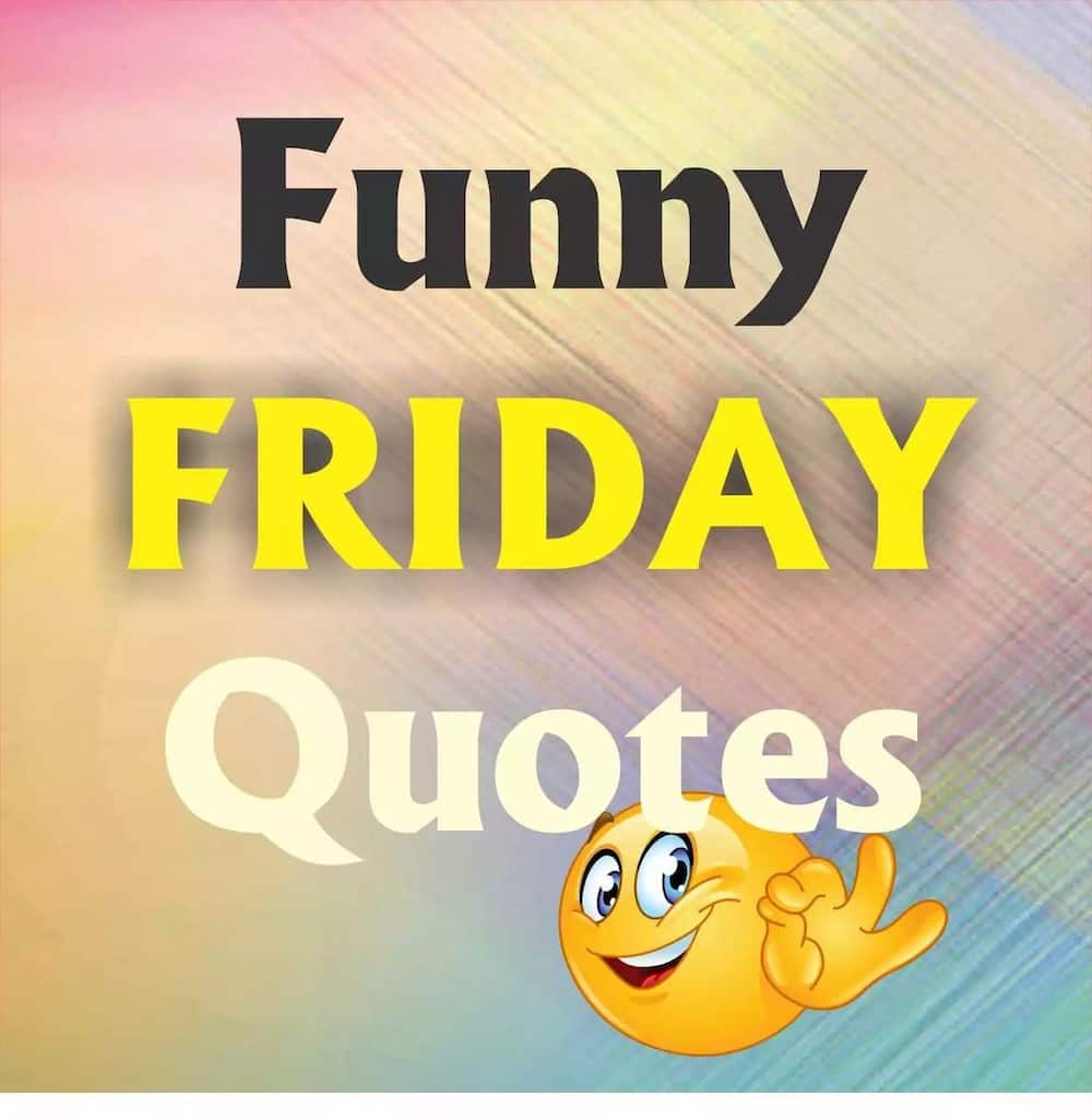 Funny Friday quotes ▷ YEN.COM.GH