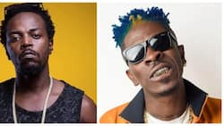 Kwaw Kese speaks on Medikal's iPhone 11 Pro gift to Shatta Wale for the 1st time