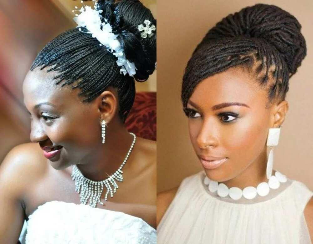 styles of rasta braids micro braids short styles rasta hair styles with braids