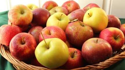 Health benefits of apple fruit