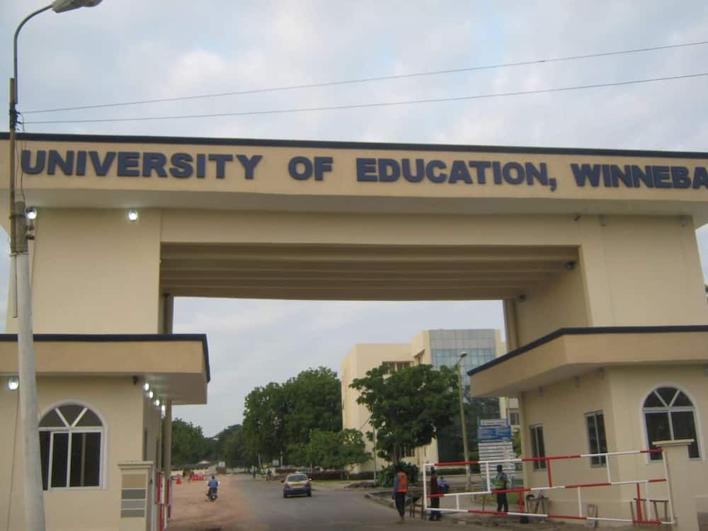 University of education winneba courses and cut off points
