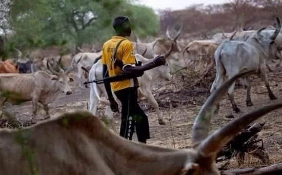 6 killed in clashes between Fulani herdsmen, residents in E/R