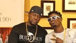 I didn't want to take a photo with Shatta Wale – Bulldog