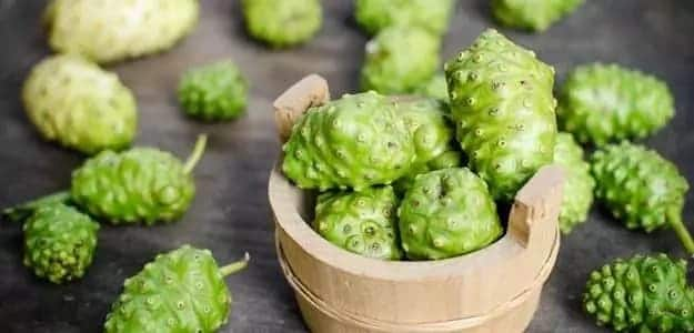 how to prepare noni juice at home