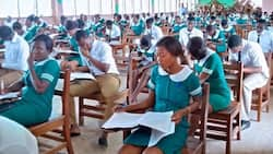 6 nursing students sacked, 20 repeated over poor academic performance