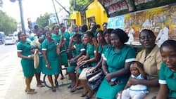 We shall show you where power lies in 2020 - Unemployed nurses warn Nana Addo