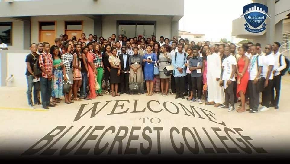 Bluecrest University College Courses And Admission Requirements Yen Com Gh