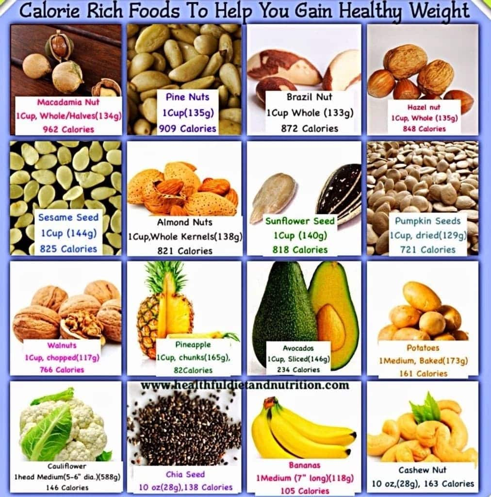 what foods help you gain weight quick :: leo.areestrore
