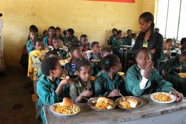 Students are being fed maggot-infested food under Mahama - Bawumia