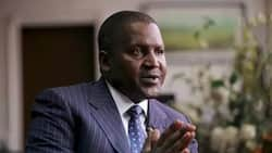 I am not getting any younger- Dangote hints at being open to dating