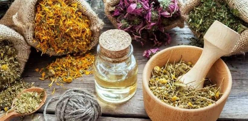 Traditional herbal medicine in Ghana - history and current state