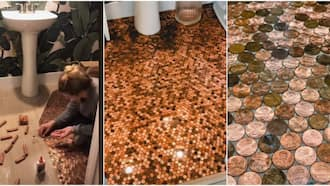 Woman spends 16 hours glueing coins to her bathroom floor; shares cute video