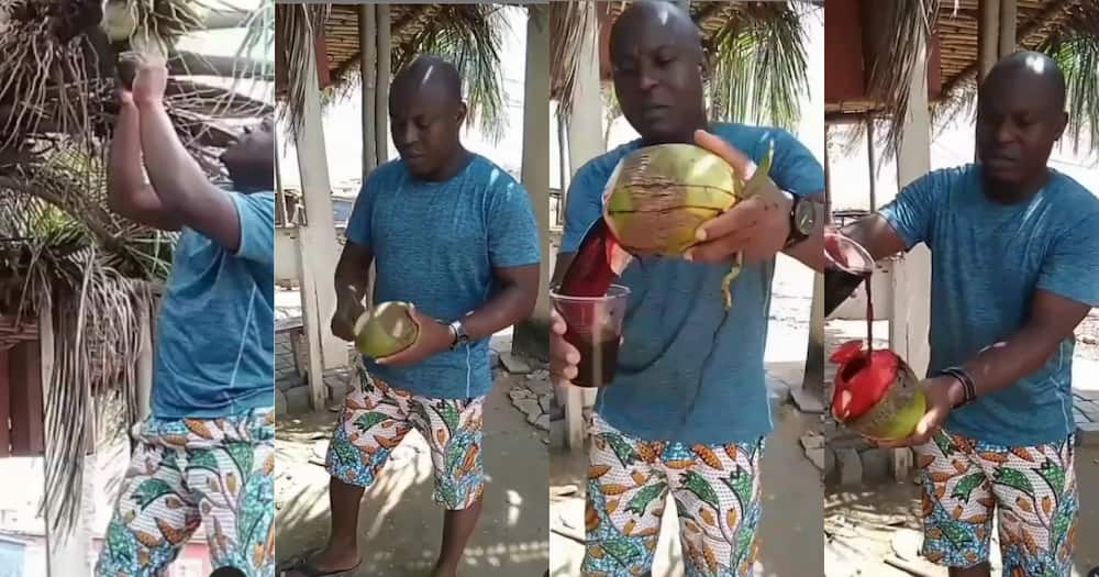 Video showing bloody coconut water is not real