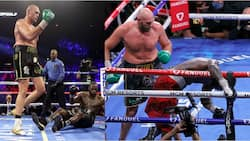 Deontay Wilder banned for months after suffering injuries during defeat to Tyson Fury