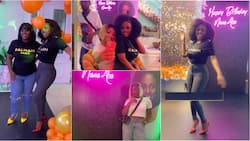 Nana Aba Anamoah shares chats as uninvited guest who stole candles from her party begs for forgiveness