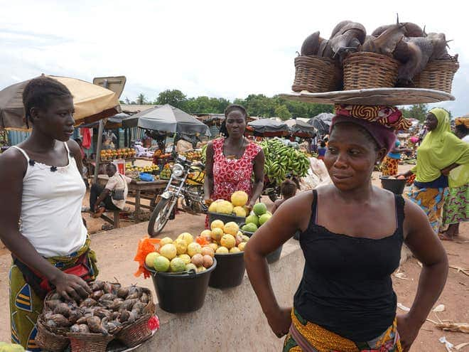 Young Ghanaians working hard to 'make farming trendy despite hurdles