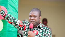 Akufo-Addo doesn't care about the future generation; he is perforating the public purse - NDC