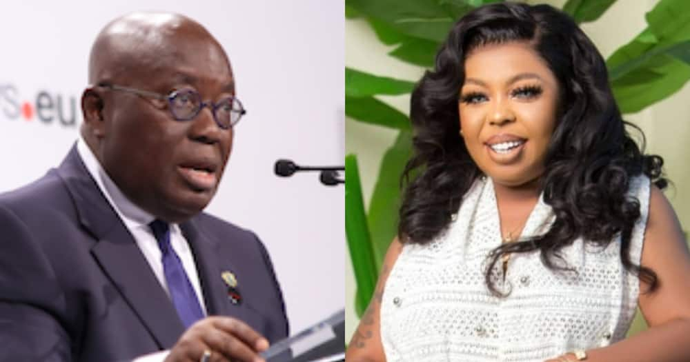 Afia Schwar begs President Akufo-Addo for Appointment After Campaigning for him