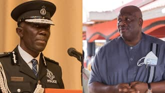 Dampare, Henry Quartey, 2 other appointees of Akufo-Addo who have made him proud