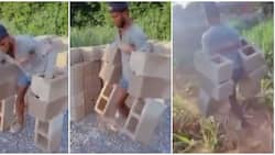 Young man displays massive strength as he carries 6 cement blocks at once in video
