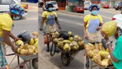 Rosemond Abena Nyamekye: Meet the Ghanaian woman earning a living from selling fresh coconuts