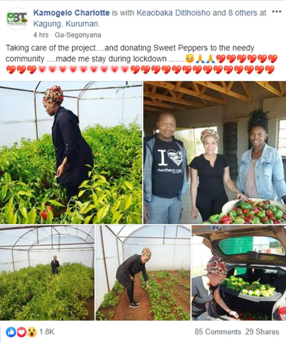 """Female farmer feeds the poor, touches Mzansi: """"You're our inspiration"""""""
