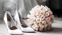 Exciting bridal shower messages that work