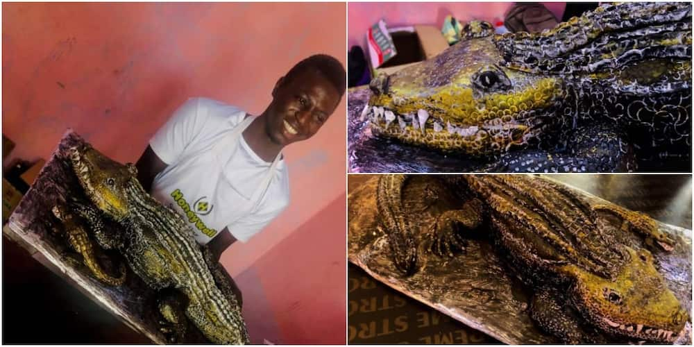 Nigerian man wows social media after baking crocodile cake, says he was directed by holy spirit