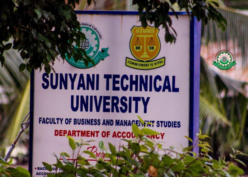 Sunyani Technical University courses