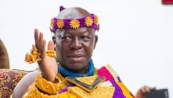 Otumfuo humbly kneels down before white priest for prayers; video causes stir