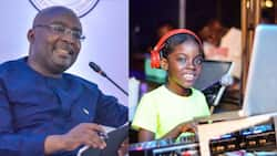 """DJ Switch meets Bawumia; he calls her """"talented global icon"""""""