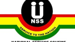NSS releases 2021 postings as 81,081 graduates get deployed to various institutions