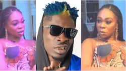 My relationship with Shatta Wale was a waste of my youth - Shatta Michy speaks