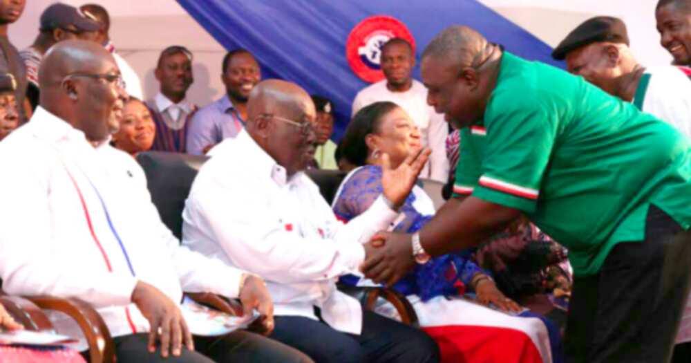 Akufo-Addo has legitimate mandate – Koku Anyidoho