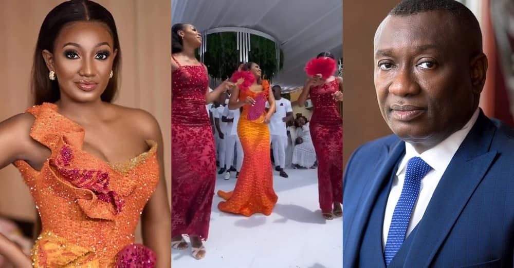 Meet the 2 beautiful sisters of Dr Enerst Ofori Sarpong's daughter who just got married