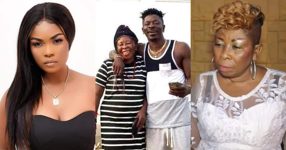 Magluv and Shatta Wale's mother